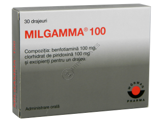 Мильгамма 100